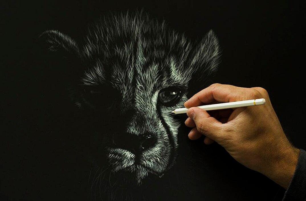 disegni-dipinti-iperrealisti-animali-selvatici-africa-richards-symonds-05