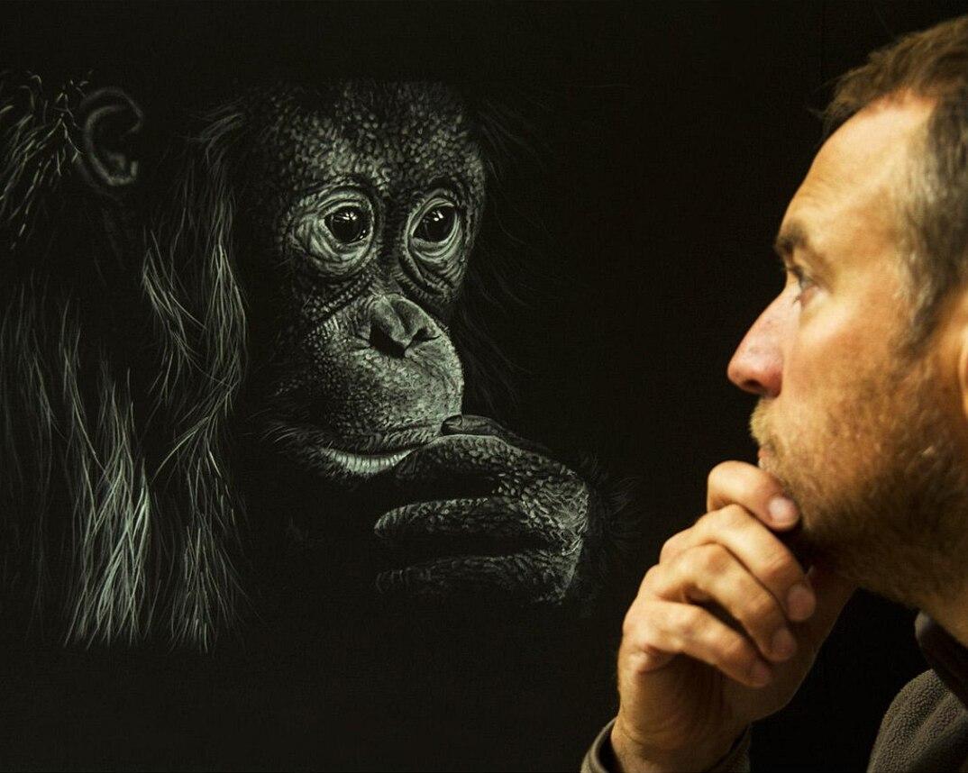 disegni-dipinti-iperrealisti-animali-selvatici-africa-richards-symonds-06