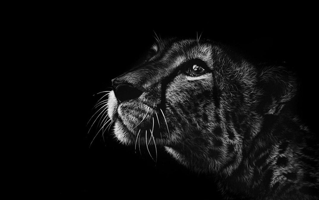 disegni-dipinti-iperrealisti-animali-selvatici-africa-richards-symonds-10