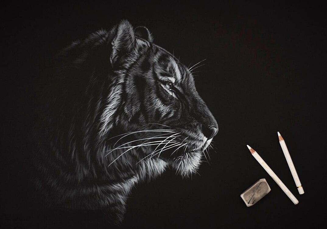 disegni-dipinti-iperrealisti-animali-selvatici-africa-richards-symonds-11
