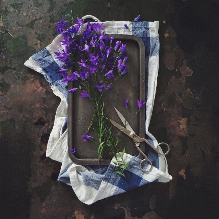 fotografia-natura-morta-cibi-fiori-alia-kalinovskaya-07
