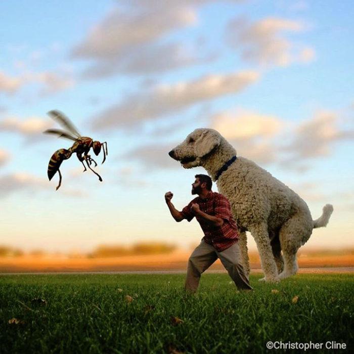 fotografia-photoshop-cane-gigante-avventure-juji-christopher-cline-02
