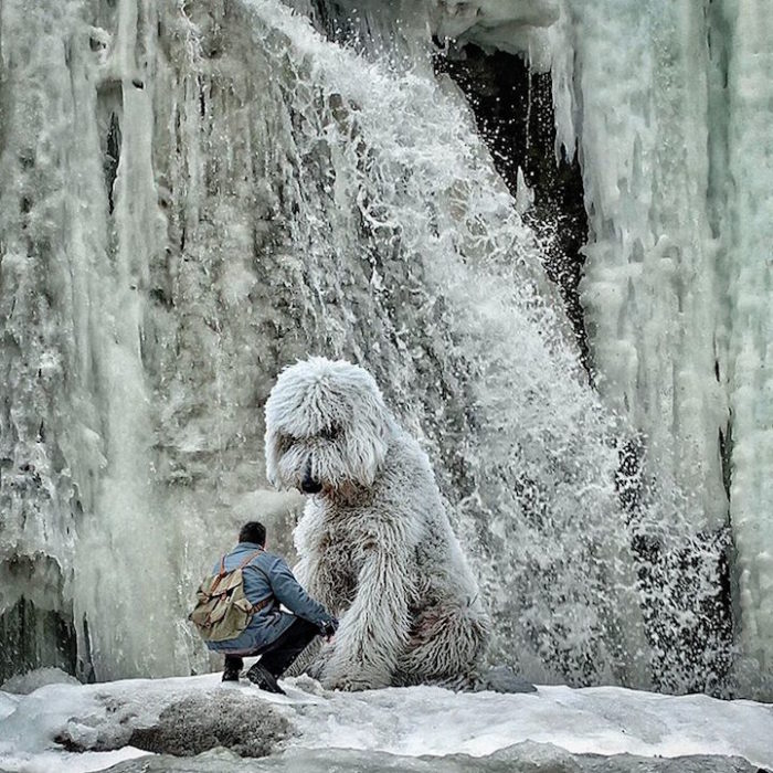 fotografia-photoshop-cane-gigante-avventure-juji-christopher-cline-09