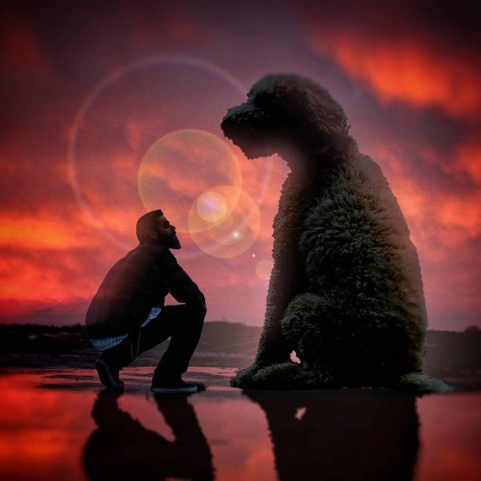 fotografia-photoshop-cane-gigante-avventure-juji-christopher-cline-10