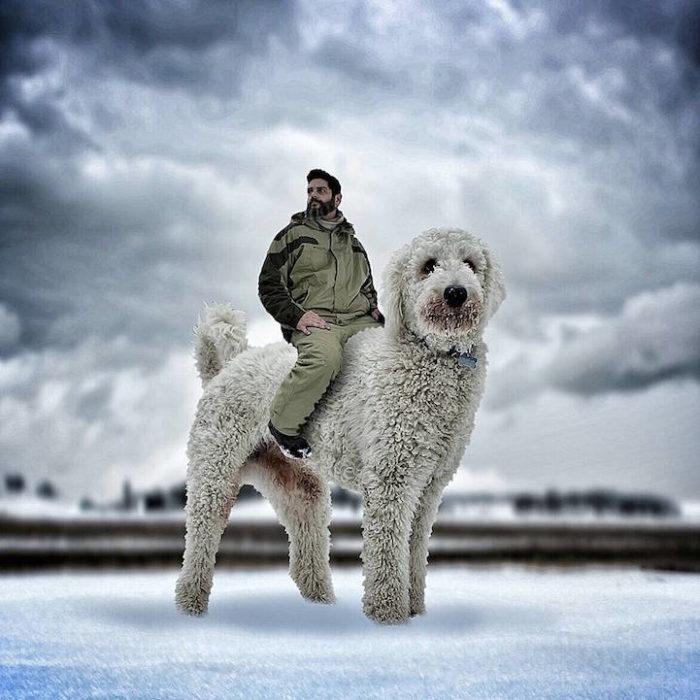 fotografia-photoshop-cane-gigante-avventure-juji-christopher-cline-19