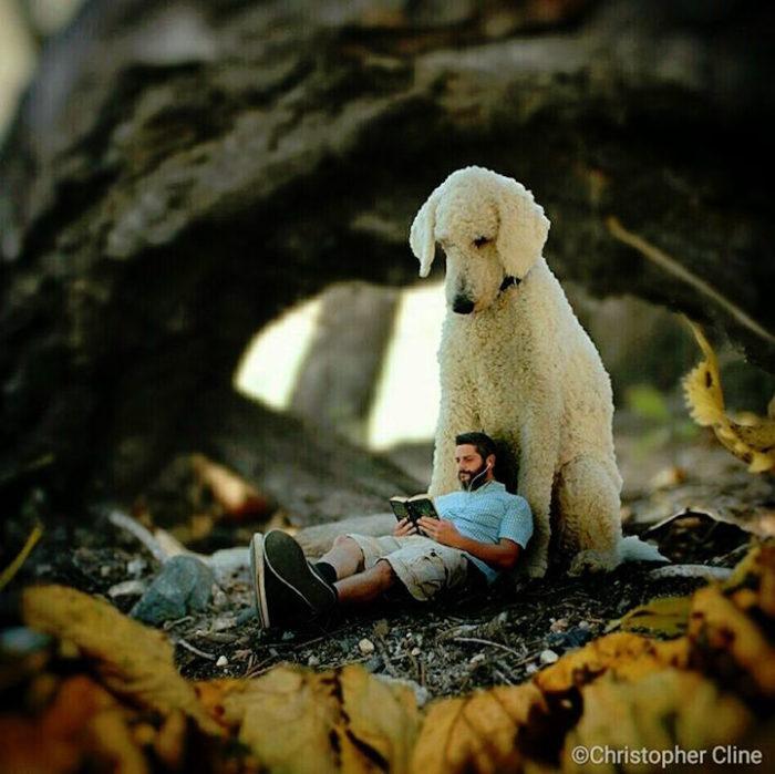fotografia-photoshop-cane-gigante-avventure-juji-christopher-cline-22