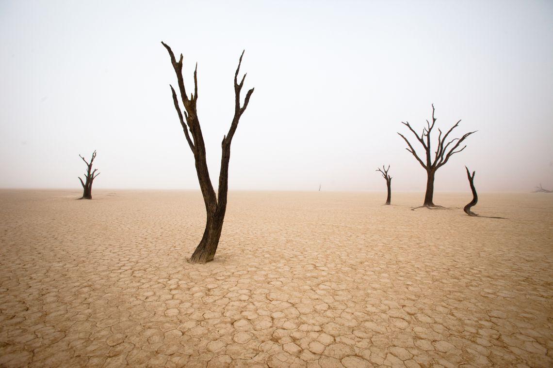 fotografia-viaggi-mondo-jody-macdonald-namibia