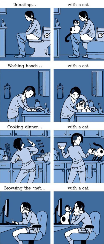 fumetti-divertenti-comportamento-gatti-in-casa-02