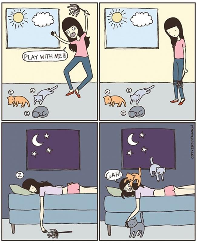 fumetti-divertenti-comportamento-gatti-in-casa-03