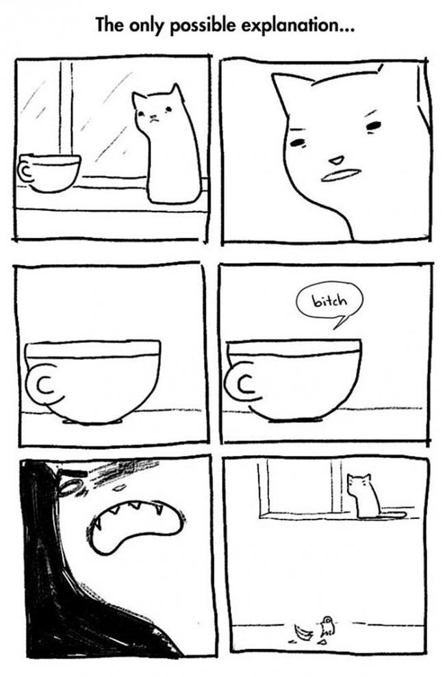 fumetti-divertenti-comportamento-gatti-in-casa-06