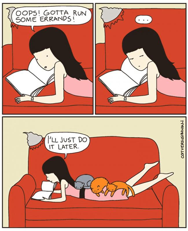 fumetti-divertenti-comportamento-gatti-in-casa-07