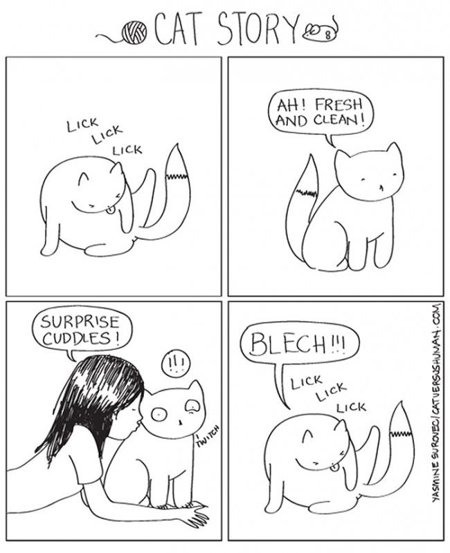 fumetti-divertenti-comportamento-gatti-in-casa-14