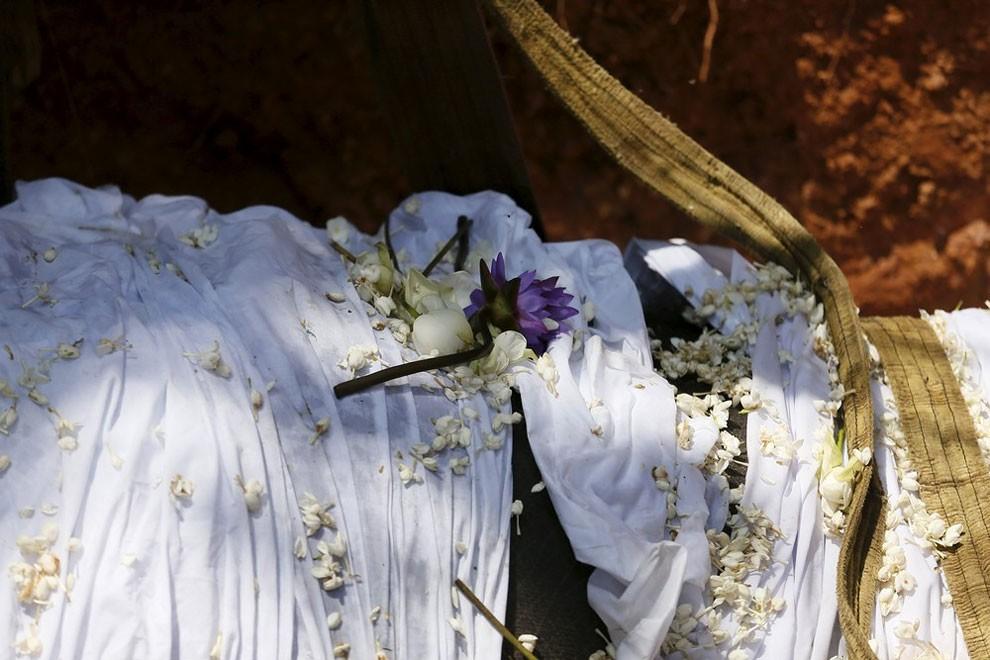 funerale-elefante-tempio-buddista-colombo-sri-lanka-01