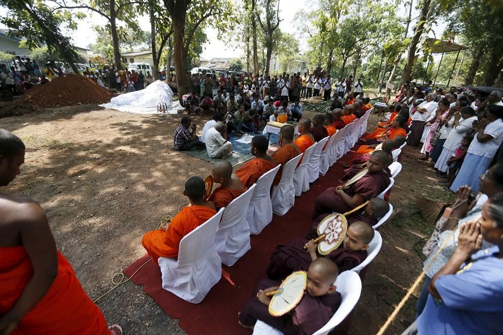 funerale-elefante-tempio-buddista-colombo-sri-lanka-03