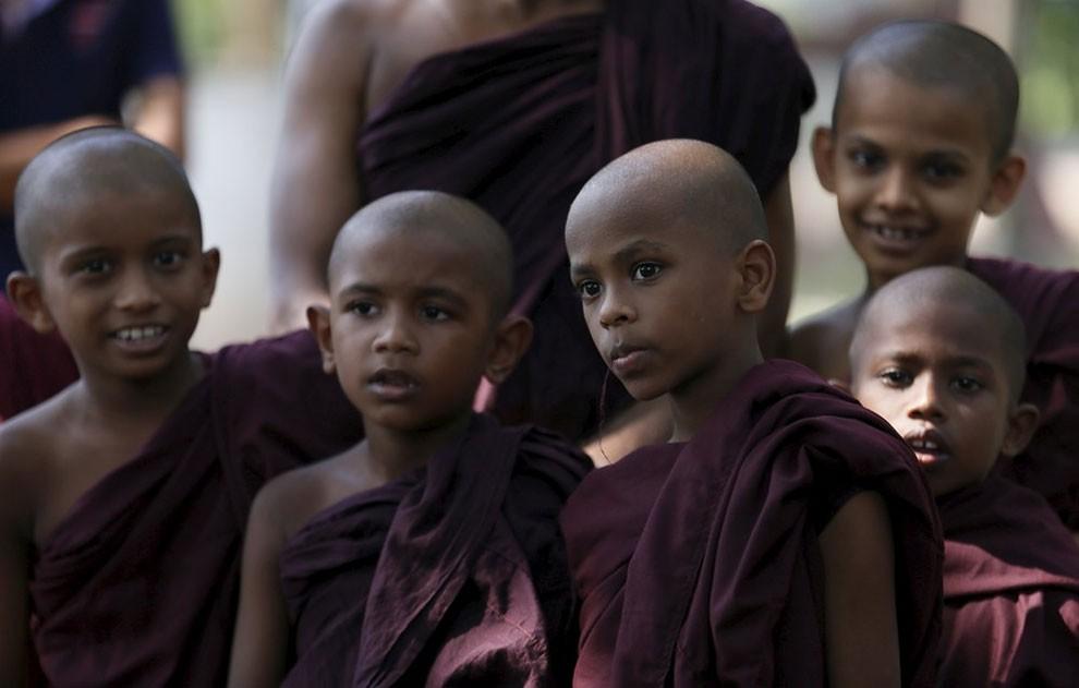 funerale-elefante-tempio-buddista-colombo-sri-lanka-08