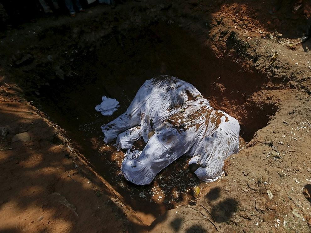funerale-elefante-tempio-buddista-colombo-sri-lanka-10