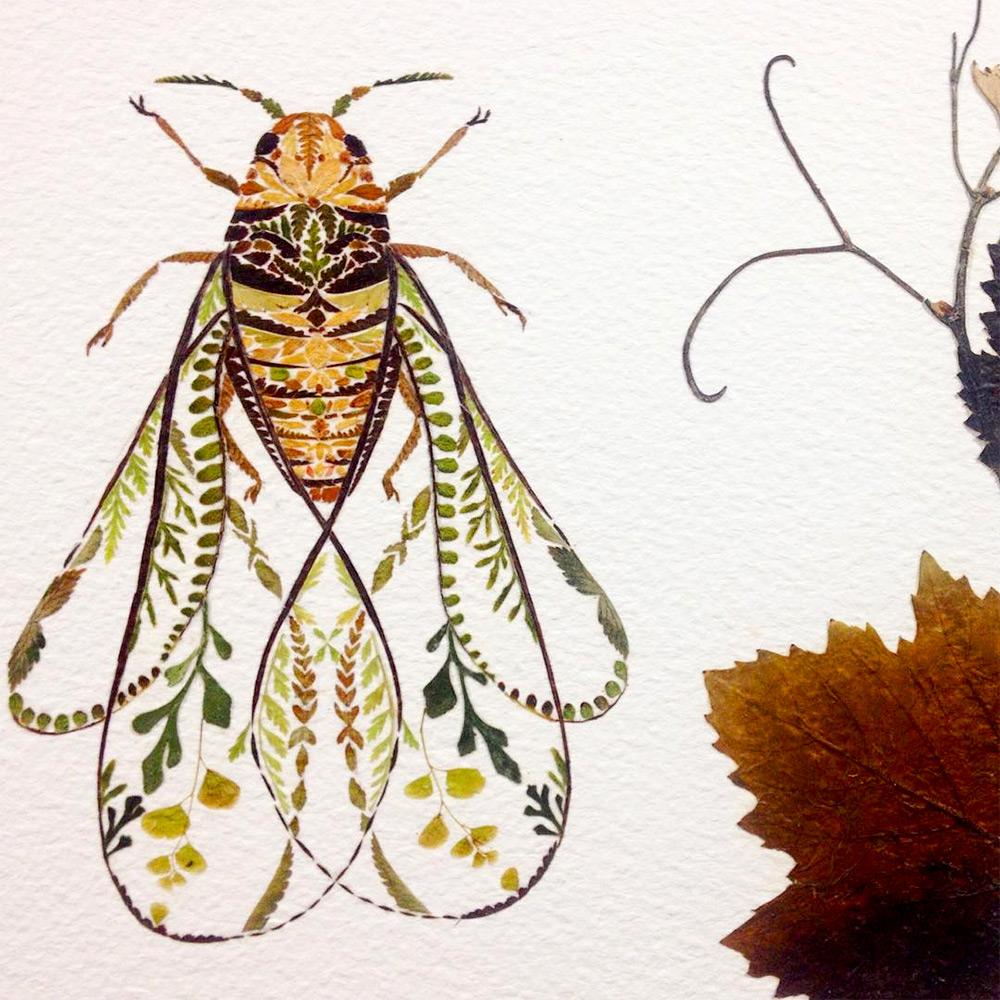 illustrazioni-animali-alghe-felci-foglia-oro-helen-ahpornsiri-06
