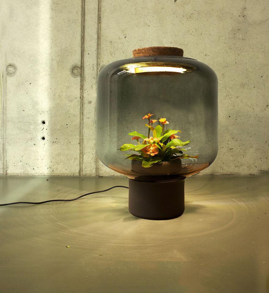 lampade-fanno-crescere-piante-3