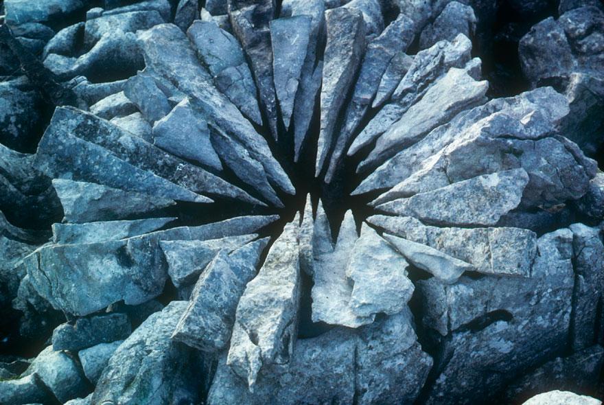 land-art-installazioni-natura-andy-goldsworthy-07