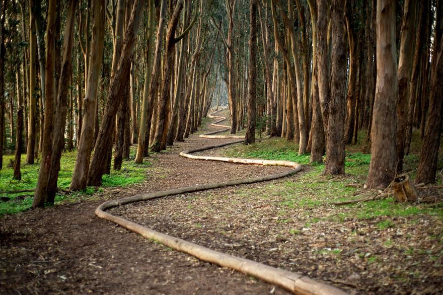 land-art-installazioni-natura-andy-goldsworthy-10
