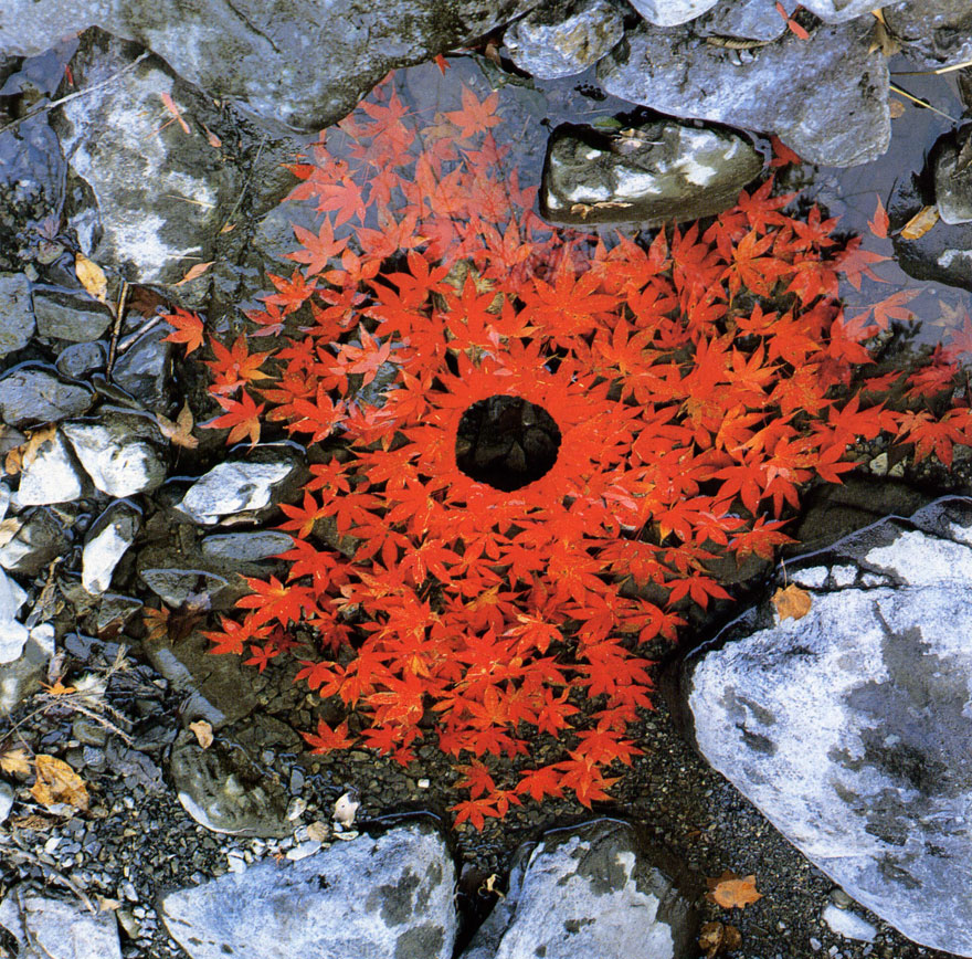 land-art-installazioni-natura-andy-goldsworthy-14