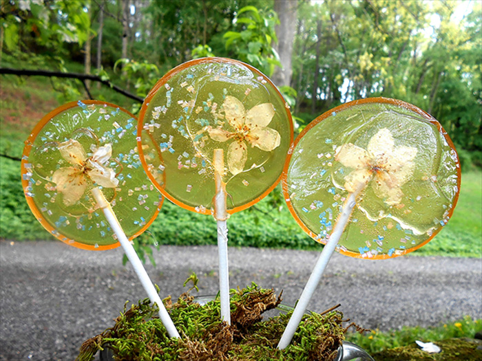 lecca-lecca-fiori-petali-commestibili-food-art-janet-best-11