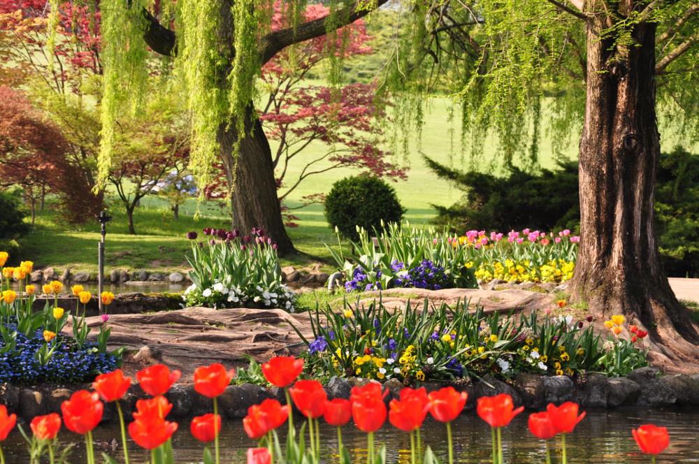 Fiori Nel Mondo.25 Posti Nel Mondo Che Diventano Incredibili Giardini Fioriti