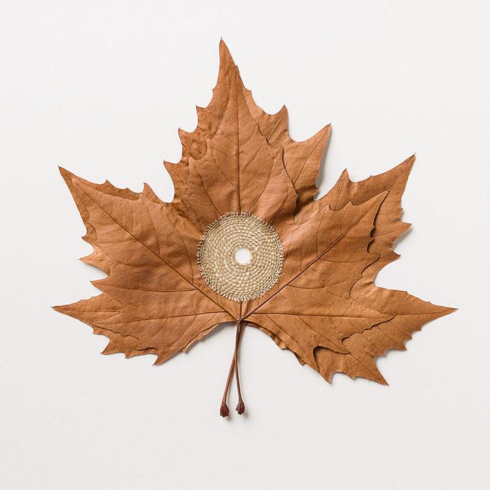 sculture-foglie-secche-uncinetto-filo-susanna-bauer-04
