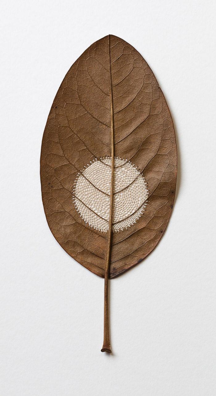 sculture-foglie-secche-uncinetto-filo-susanna-bauer-10