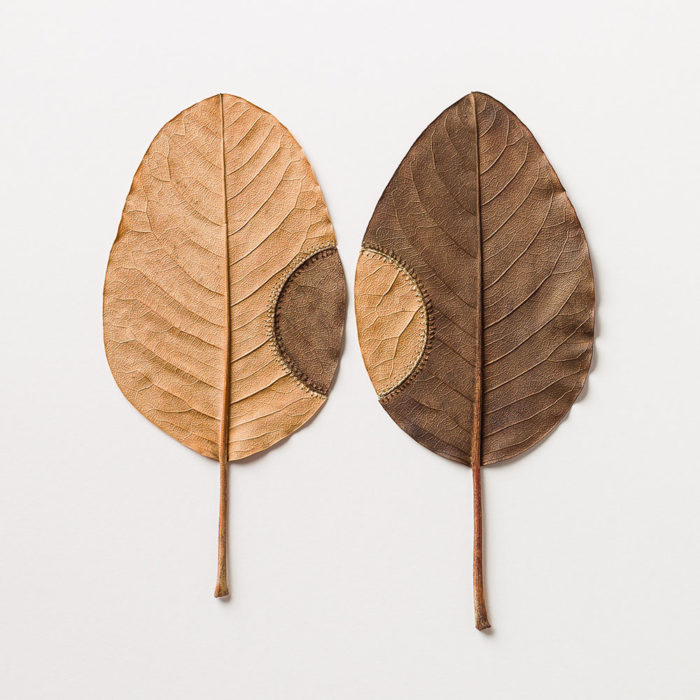 sculture-foglie-secche-uncinetto-filo-susanna-bauer-14