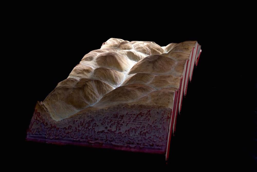 sculture-libri-incisi-montagne-guy-laramee-02