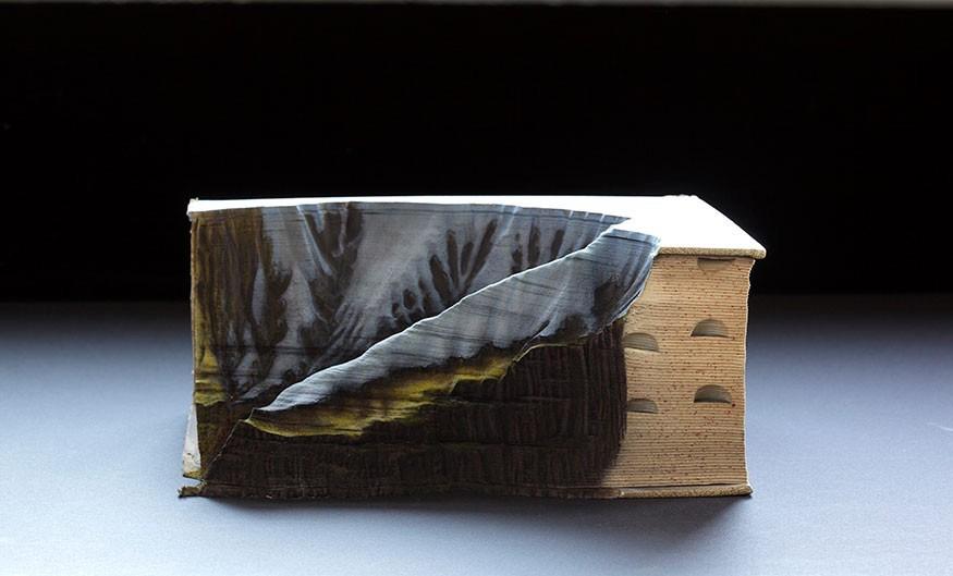 sculture-libri-incisi-montagne-guy-laramee-05