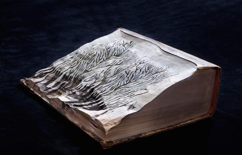 sculture-libri-incisi-montagne-guy-laramee-11