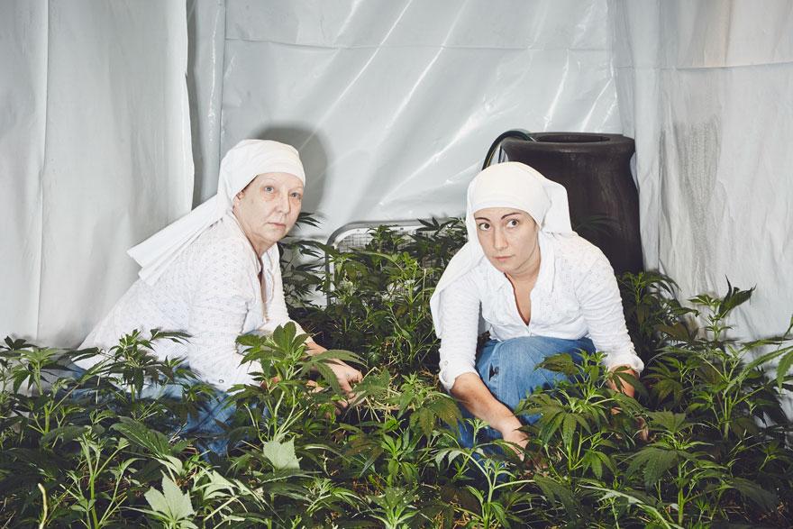 suore-coltivano-marijuana-sisters-of-the-valley-01