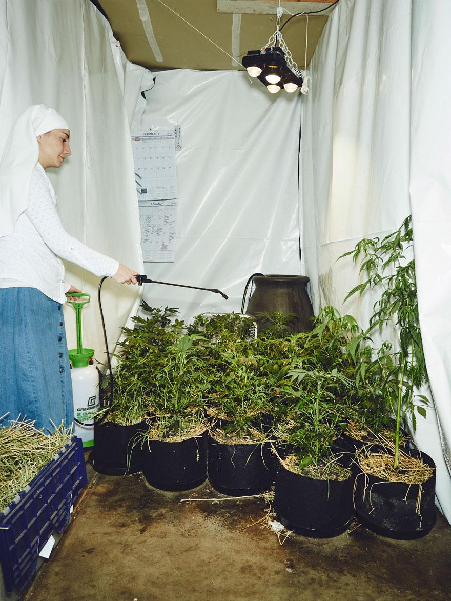 suore-coltivano-marijuana-sisters-of-the-valley-05