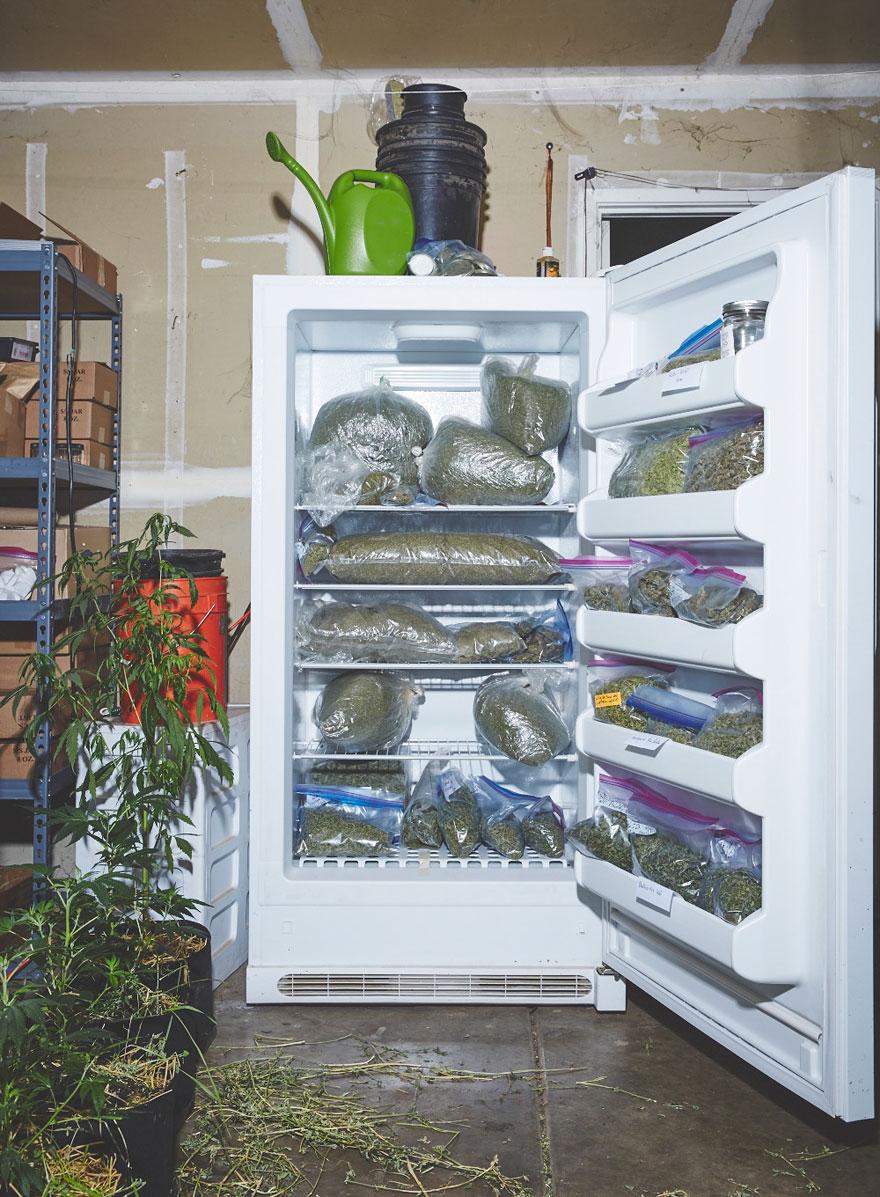 suore-coltivano-marijuana-sisters-of-the-valley-14