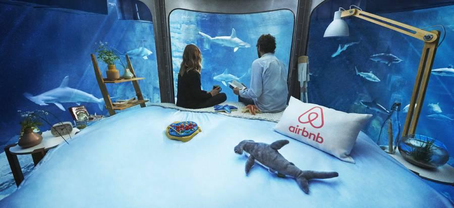 airbnb-affitta-camera-acquario-squali-parigi-3