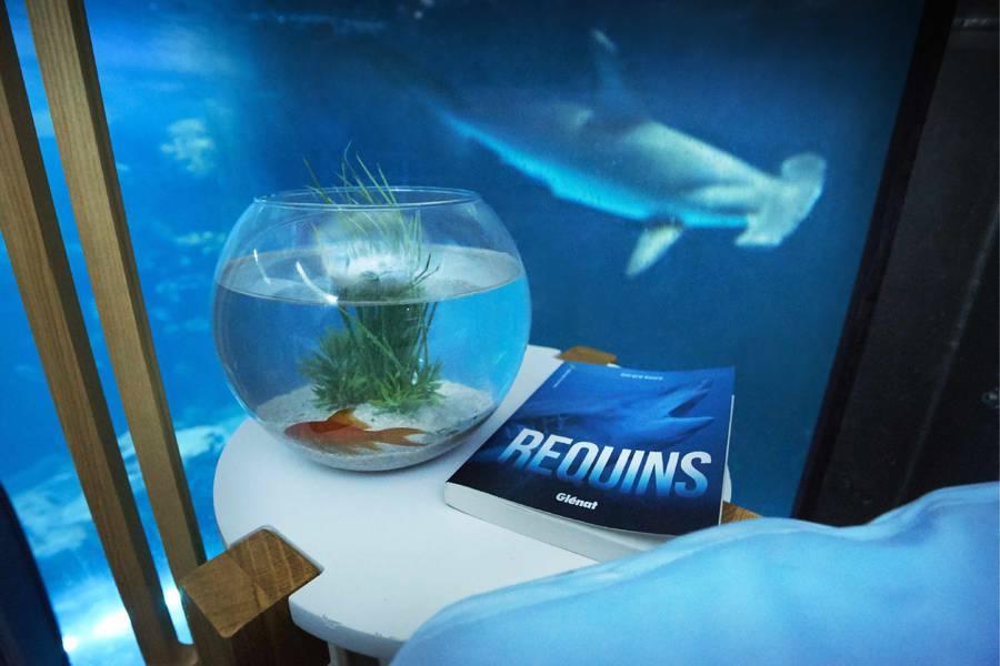airbnb-affitta-camera-acquario-squali-parigi-4