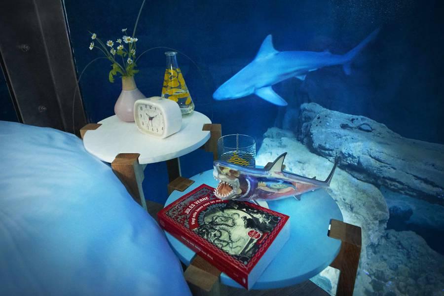 airbnb-affitta-camera-acquario-squali-parigi-5