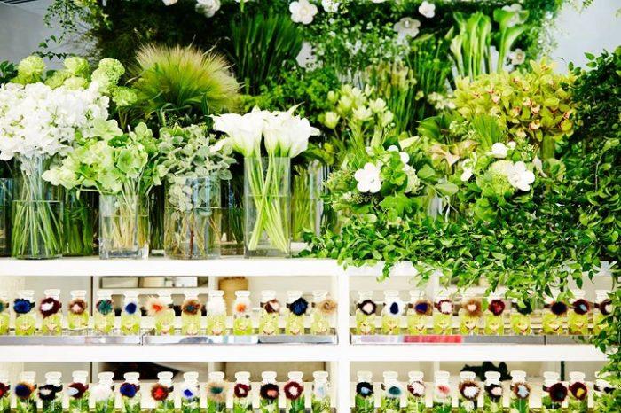 ape-piaggio-negozio-fiori-fendi-makoto-azuma-6