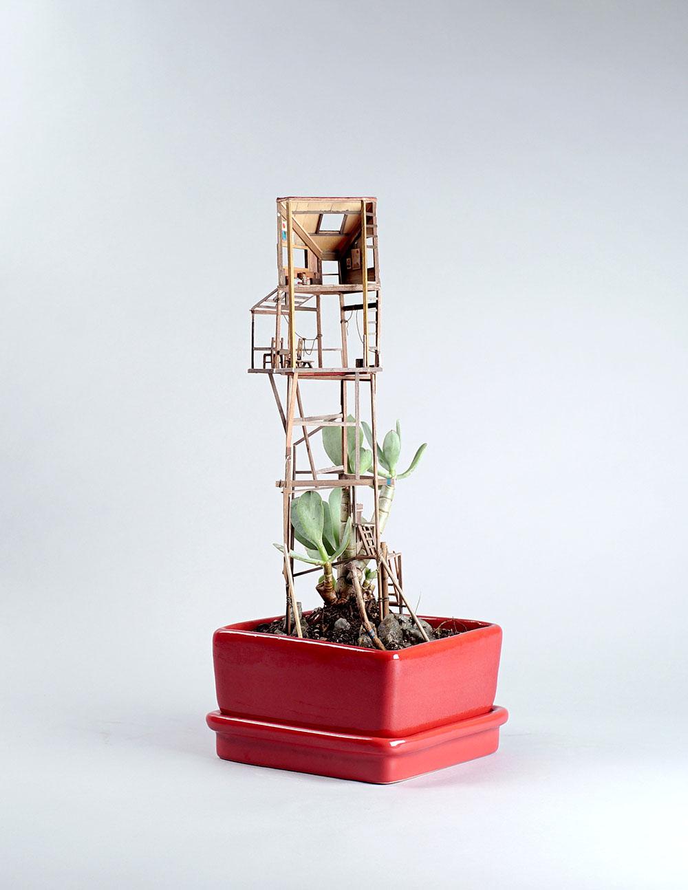 case-su-albero-miniatura-jedediah-corwyn-voltz-4