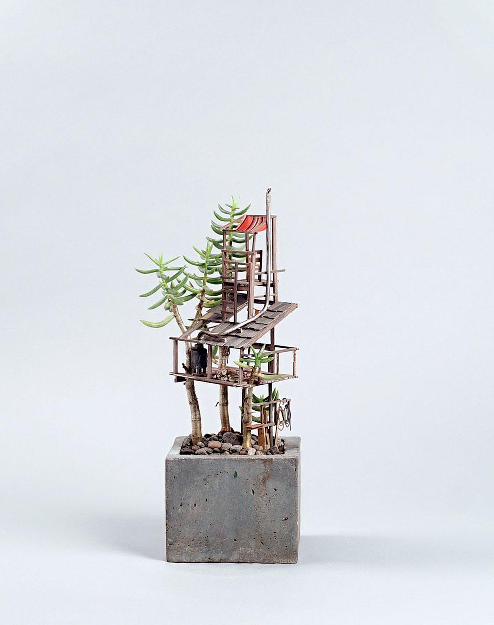 case-su-albero-miniatura-jedediah-corwyn-voltz-6