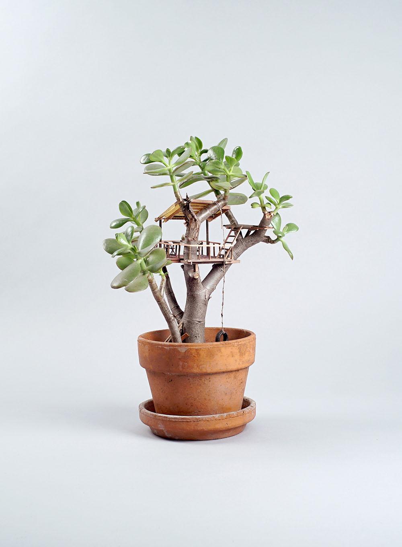 case-su-albero-miniatura-jedediah-corwyn-voltz-7