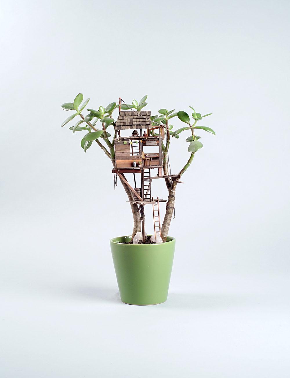 case-su-albero-miniatura-jedediah-corwyn-voltz-8