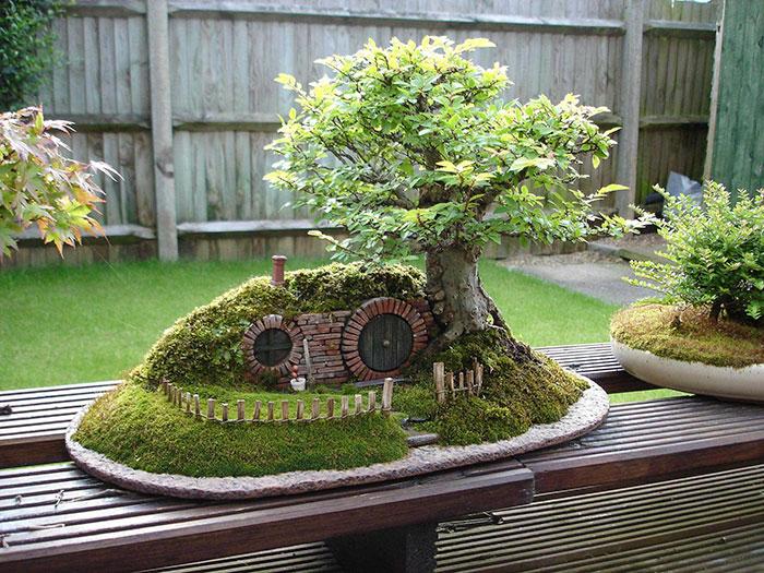 immagini-incantevoli-bonsai-23