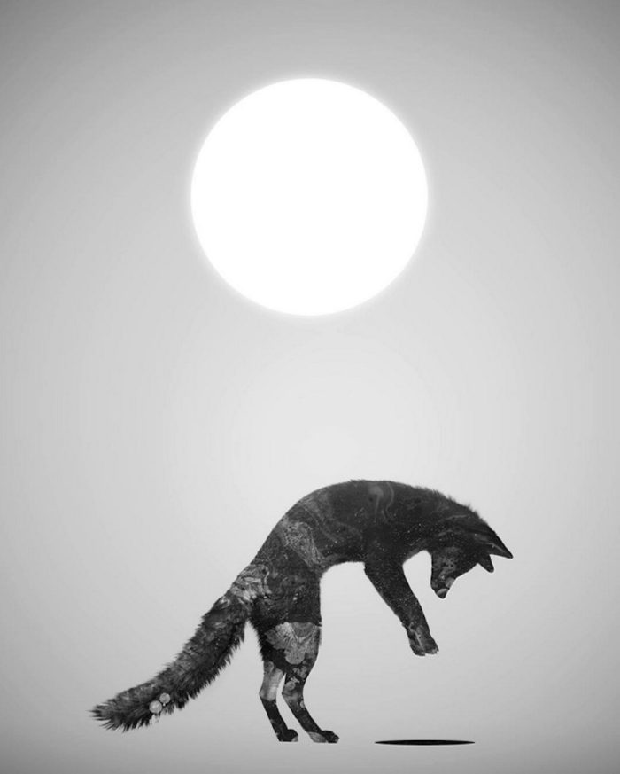 immagini-surreali-donne-natura-daniel-taylor-04