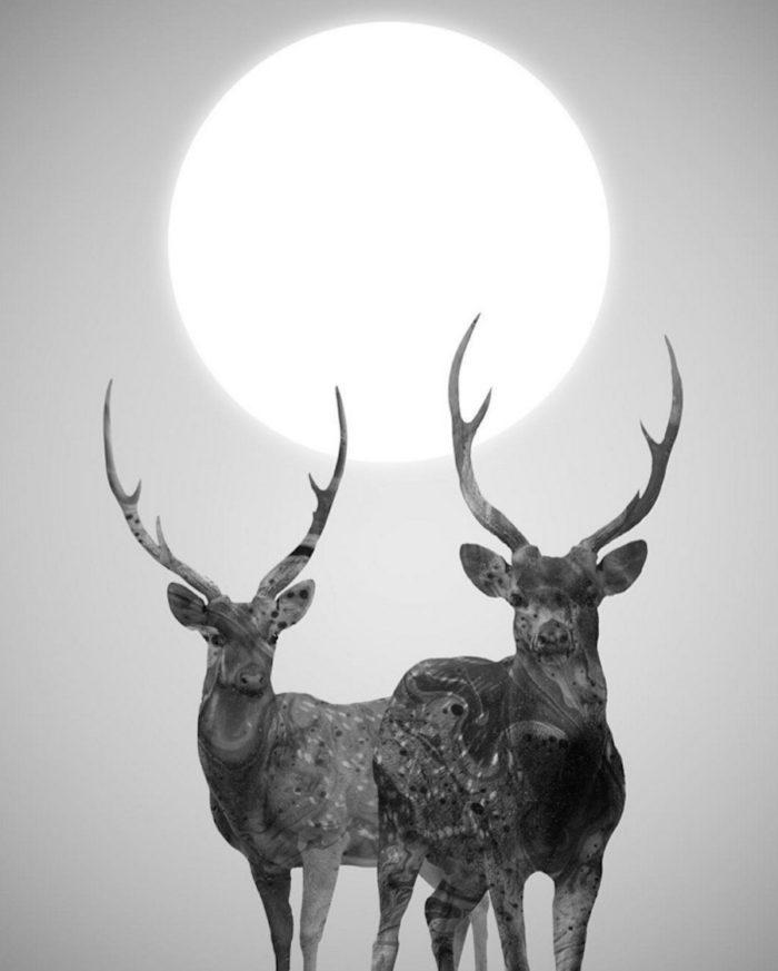 immagini-surreali-donne-natura-daniel-taylor-05