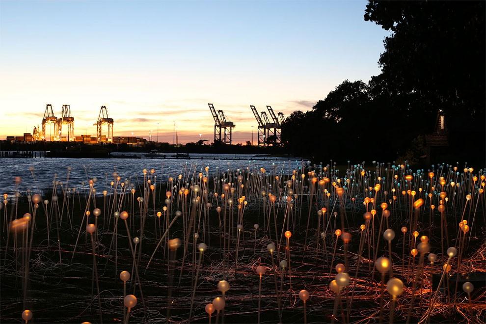 Popolare Artista usa 50.000 luci per trasformare un deserto in una favola  CI47