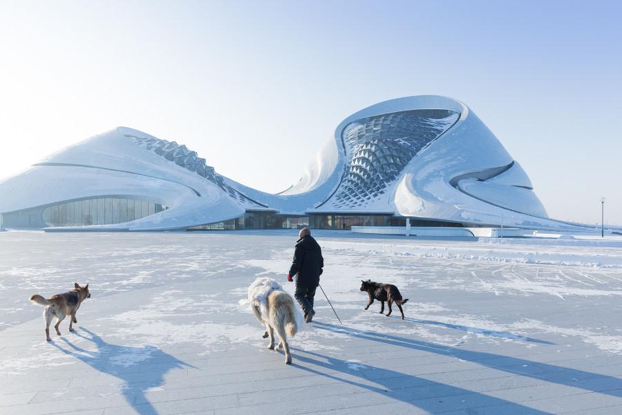 iwan-baan-fotografa-opera-house-harbin-cina-mad-architects-04