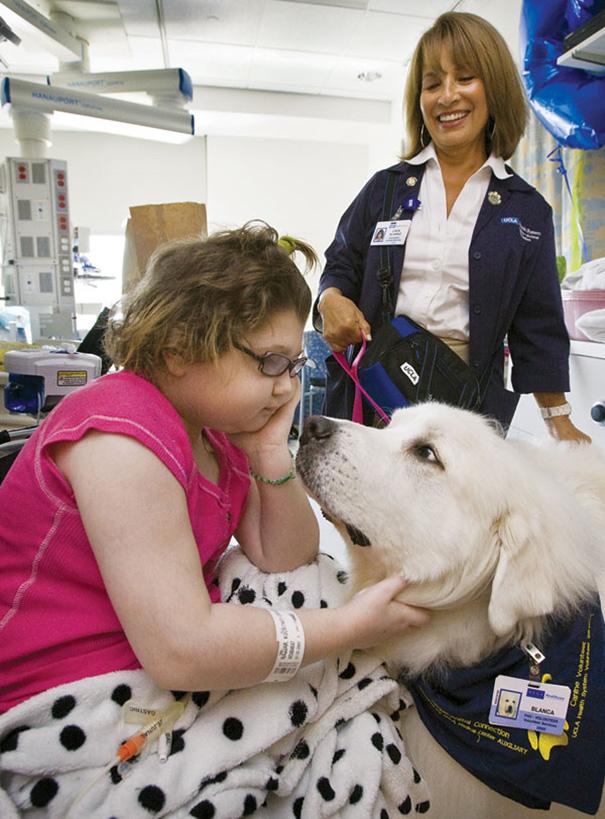 pet-therapy-ospedale-permette-ingresso-cani-gatti-animali-4